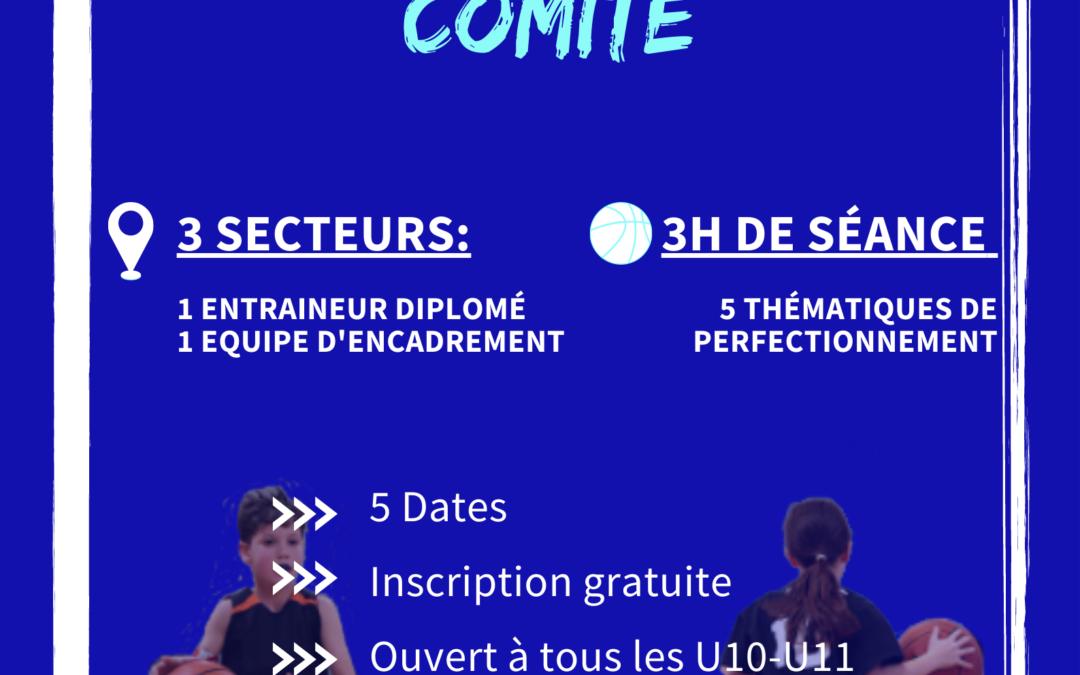 CENTRE DE PERFECTIONNEMENT COMITE